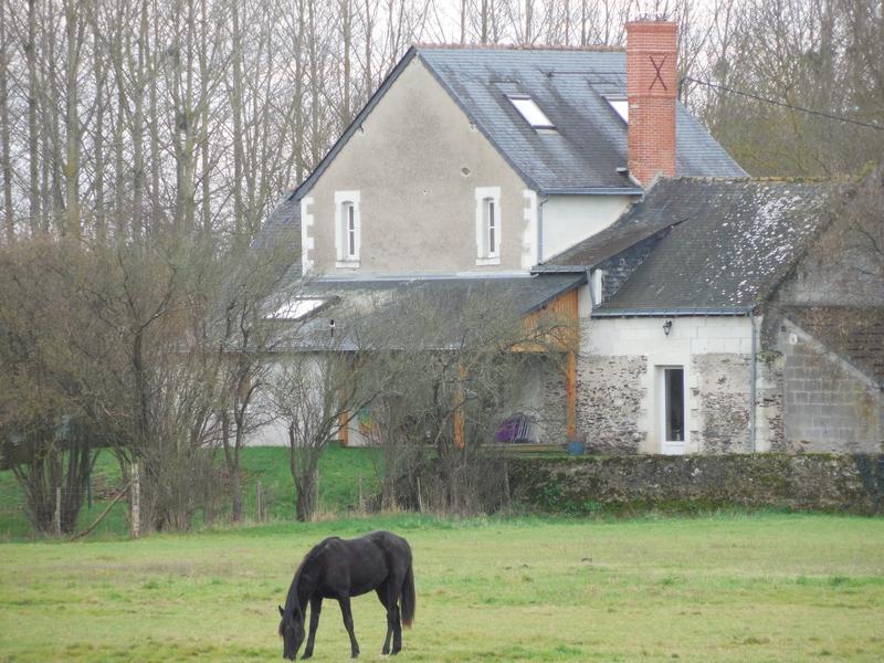 """Французская провинция: дома ... со своими """"лицами"""", именами и ... лошадьми"""